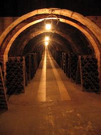Codornui Cava Cellar