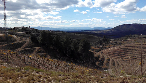Surrounding area, Priorat